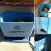CompostBinCollage