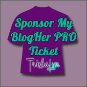 Sponsor Me to Attend BlogHer PRO 14