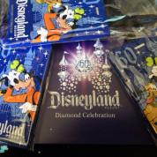 2 Days until Disneyland!
