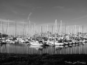 Boats at Marina Village in Alameda